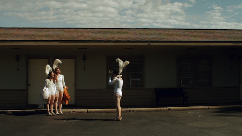 Three of a Feather, 2011, video